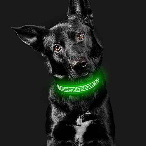 Candofly Glowing LED Dog Collar - Rechargeable Light Up Dog Collars Reflective Pet Collar Glow in The Dark Dog Lights for Night Walking & Camping Perfect for Small Medium Large Dogs (Green, Large)