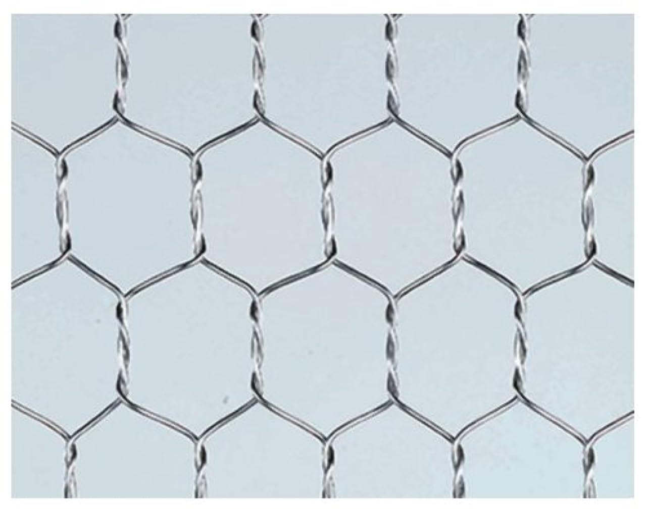 壊滅的な壊滅的な例産業用金網 ステンレス平織金網 線径0.65mm:6メッシュ 開目3.58mm[幅1000mm×高1000mm]
