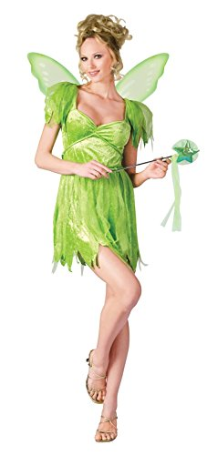 Lady Fairy Costume (Fun World Women's Neverland Fairy Adult Costume, Green, Medium/Large)