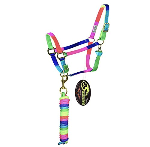 Southwestern Equine Rainbow Halter and Lead Horse Size Adjustable Nose Clip Jaw Side (Horse, Rainbow Halter w/Side Clip and Lead)