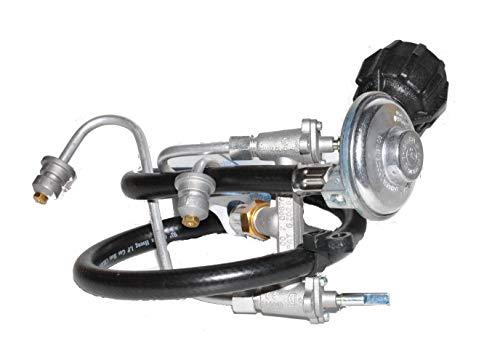 Weber #80390 Q300 Manifold