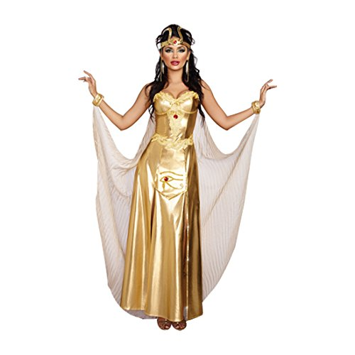 Women Cleopatra Costumes (Dreamgirl Women's Goddess of Egypt Costume, Gold,)