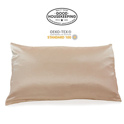 Fishers Finery 19mm 100% Pure Mulberry Silk Pillowcase Good Housekeeping Quality Tested (Taupe, Q)