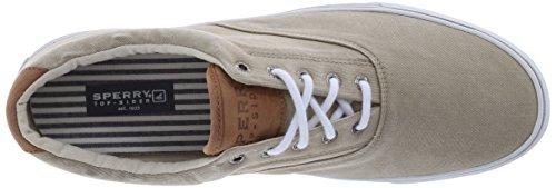 Sperry Top-sider Mens Striper Ll Cvo Fashion Sneaker Chino