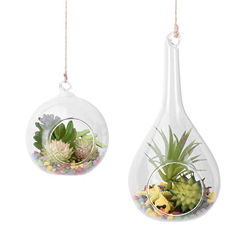 AUTOARK Glass Globe and Teardrop Hanging Succulent Air Plant Terrarium,Glass Vase Hanging Planter,Candle Holder,Home & Office Decor Accent,APT-013 (Vases Hanging Teardrop Glass)