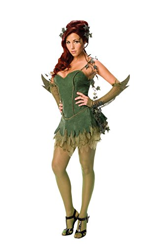 Poison Ivy Fancy Dress Costumes (Secret Wishes Batman Poison Ivy Costume, Green, X-Small)