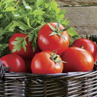 early girl tomato seeds - 4