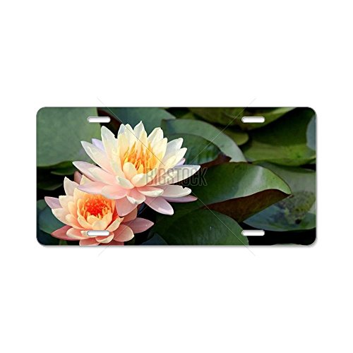 cafepress-pink-lotus-aluminum-license-plate-aluminum-license-plate-front-license-plate-vanity-tag