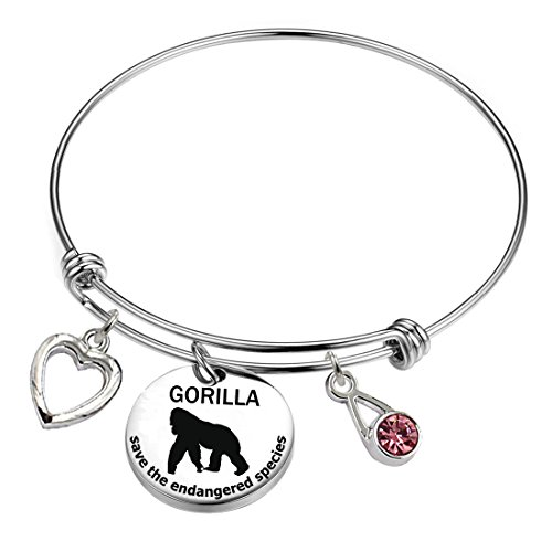 - YOYONY Grilla-Save The Endangered Species Series-Inspirational/Love/Positive Quotes/Thankful/Beauty/Praise/Religious/Meaningful Charm Bracelets. (Gorilla-Save The Endangered Species)