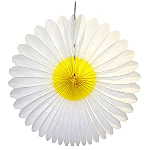 Devra Party 3-pack 20 Inch Honeycomb Tissue Paper Daisy Flower Fan (White and Yellow) 66
