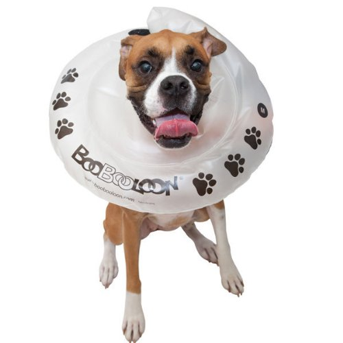 BooBooLoon® Recovery Collar Inflatable - M (BBL06828) -