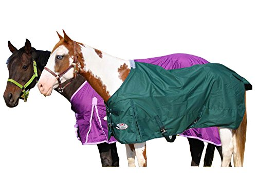 Waterproof Horse Sheet (Derby Originals 600D Waterproof Breathable Rain Sheet with Lining (Hunter Green, 72