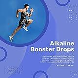 Alkazone Make Your Own Alkaline Water, Clear, 1.25