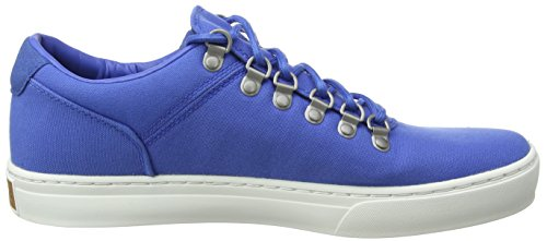 Fabric Stringate Adventure Nebulas J45 Oxford Uomo Timberland Canvas Scarpe 0 Blu 2 Cupsole Blue YpqdqwHxI