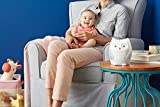 Skip Hop Baby Soother, Moonlight & Melodies, Owl