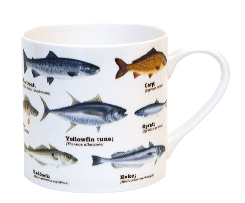 - Gift Republic Multi Fish Bone China Ecologie Mug