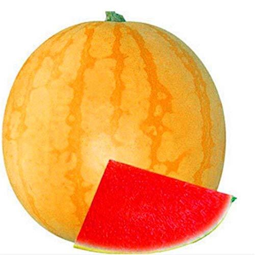 AGROBITS Watern Japonesa Súper Swe Agua n Frutas Cultivar un ...