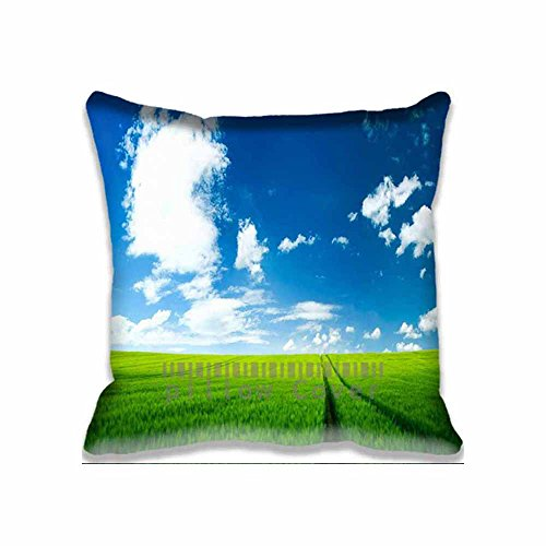 cotton-polyester-home-decorative-accent-throw-pillow-cover-beautiful-summer-landscape-cushion-case-p
