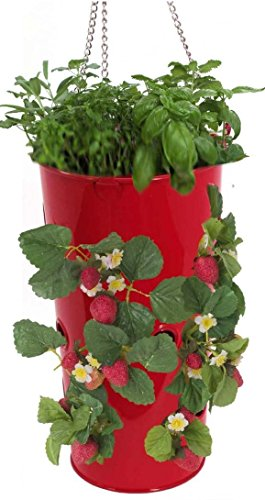 (HIT XR Galvanized Heavy Gauge Steel Hanging Strawberry Floral Planter, Red)
