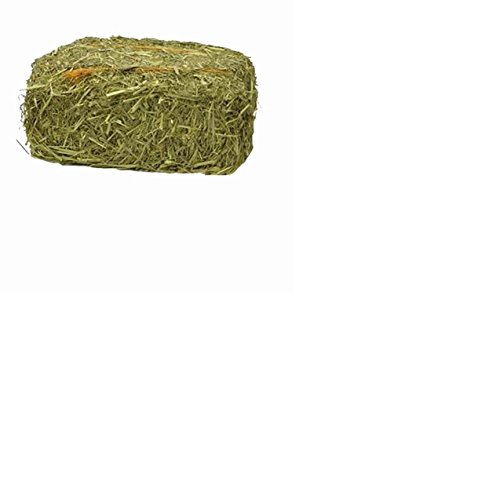 Hollywood Rabbits Hay   Timothy Hay Bale   Natural Small Animal   Rabbit Food   Leafy With Soft Stem   Flower Heads   Prime 2Nd Cutting Timothy Hay 2 Lb  Block