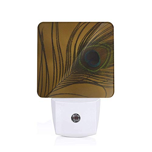 A Peacock FeatherLED Night Light Plugin - Personalized Intelligent Night Lights Plugged Into The Wall with Automatic Dusk to Dawn Sensor for Corridors, Bedrooms, Bathrooms, Kitchens