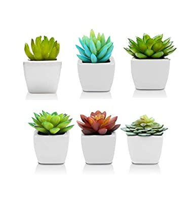 ShopZon Group Artificial Mini Succulent Plants 6PCS - Fake Succulents for Decoration - Faux Succulent Plants Indoor Home Decor