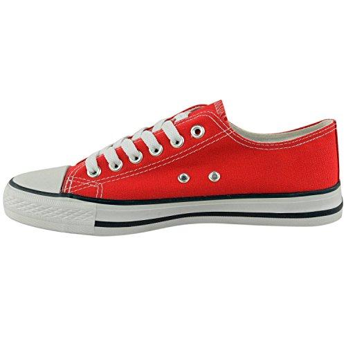 Donna Top Sneakers Scarpe da Lacci Stringate Ginnastica Tacco Moda Sneaker Donna Retro Scarpe Palestra Piatto Leggero Scarpe Ragazze 3 Basse Tela MyShoeStore da di Taglia nbsp; da qY16C6