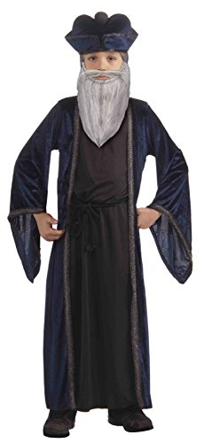 Nostradamus Kids Costumes (Forum Novelties Nostradamus Child Costume, Large)
