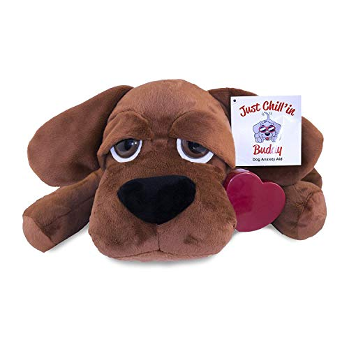 Check expert advices for plush heart dog toy?