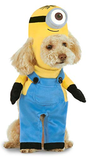Jack The Bulldog Halloween (Minion Stuart Arms Pet Suit,)