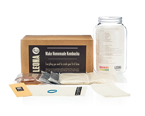 Kombucha Tea Starter Kit: Kombucha RECIPE Book, Organic Scoby with Starter Tea, Tea Bag, Loose Leaf Tea, Organic Sugar, Temperature Strip, pH Strips, and One Gallon Jar for Continuous Brewing