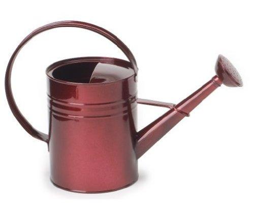 Houston International 8582E GA 1-Gallon Steel Watering Can, Glazed Apple