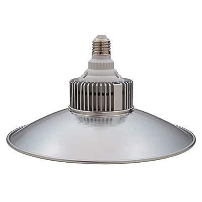 LED Shop Light with Reflector Shroud, 2500 Lumens