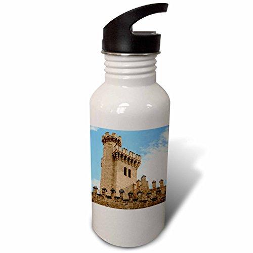 3dRose Danita Delimont - Castles - Spain, Balearic Islands, Mallorca, Palma de Mallorca, Almudaina palace - Flip Straw 21oz Water Bottle (wb_277904_2) by 3dRose