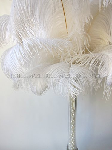 Perfectmaze 100 Piece 18''-20'' Ostrich Feather Premium Quality for Wedding Party Centerpiece Vase Decoration by Perfect Maze