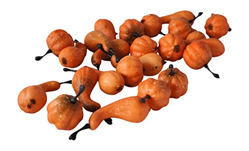 Pumpkins And Gourds - Mini Pumpkins & Gourds Fall Harvest Display Fillers Country Primitive Seasonal Décor
