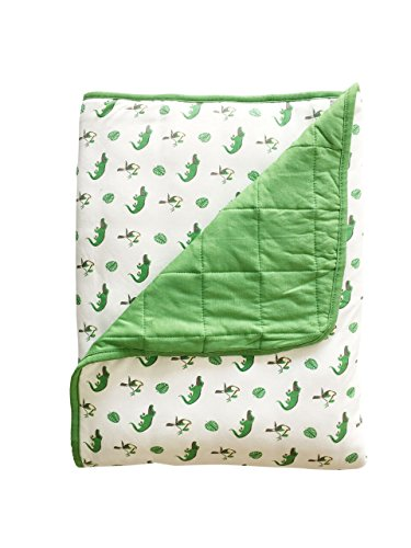 KYTE BABY Quilted Silky Bamboo Rayon Blanket (Baby 1.0 (36