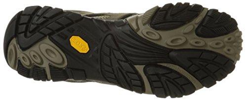 Merrell Sneaker MOAB VENT, Uomo Brown (Walnut)