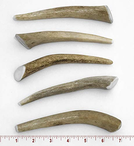 Perfect Pet Chews Small Antler product image