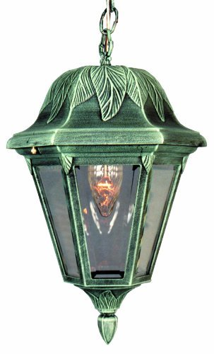 Special Lite Products Floral F-2944-VG/BV Medium Chain Pendant Light, Verde ()