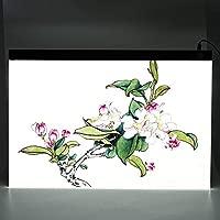 Almohadilla de copia de dibujo Tablero de mesa A2 Luz de ...