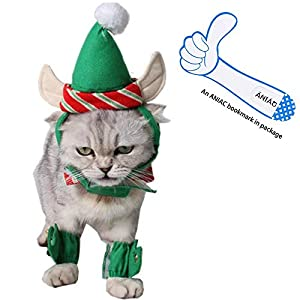 cute-cat-christmas-costume-green-elf-outfit