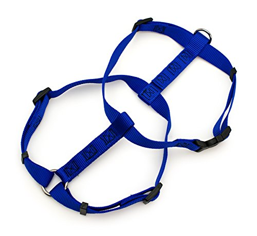 Petmate 28 inch to 36 inch Royal Blue Adjustable Dog Harness