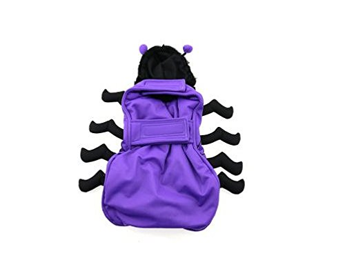 48fba80b27e9 Amazon.com  Dog Halloween Costumes Purple Spider 3D - 8 Legs Fuzzy Hoodie  With Antena Eyes(Large)  Pet Supplies