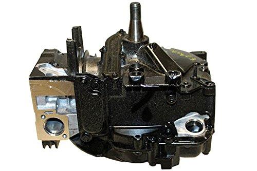 Briggs & Stratton 799982 Lawn & Garden Equipment Engine Short Block Genuine Original Equipment Manufacturer (OEM) Part