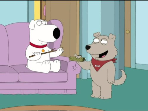 ans (Man Family Guy)