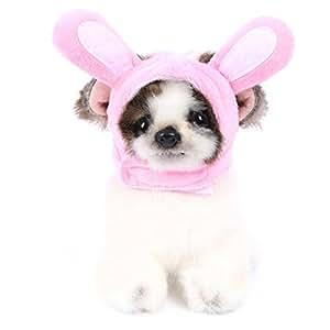 Conysan Girasol Estilo de Dibujo Animado Gorros para Mascotas,Adornos de Cabeza para Mascotas Gatos Perros,Gorros para Disfraces de Navidad Halloween para Gatos Perros(Conejo, M)