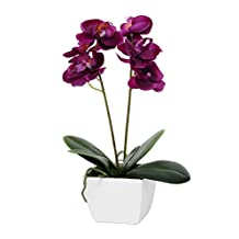 Artificial Orchid Potted Deep Pink Fuschia Silk flower Plant In White Wooden Pot 33 Tall