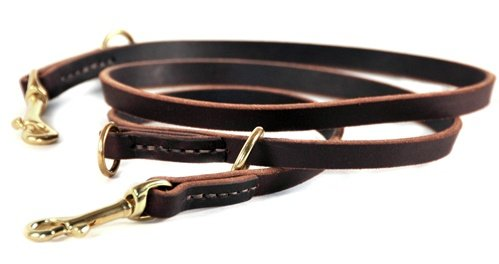 Dean and Tyler DT Dynamite Dog Leash, Brown 5-Feet by 1/2-Inch Width With Solid Brass Hardware. by Dean & Tyler