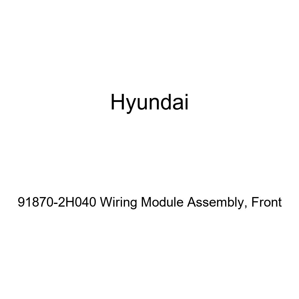 Front Genuine Hyundai 91870-2H040 Wiring Module Assembly